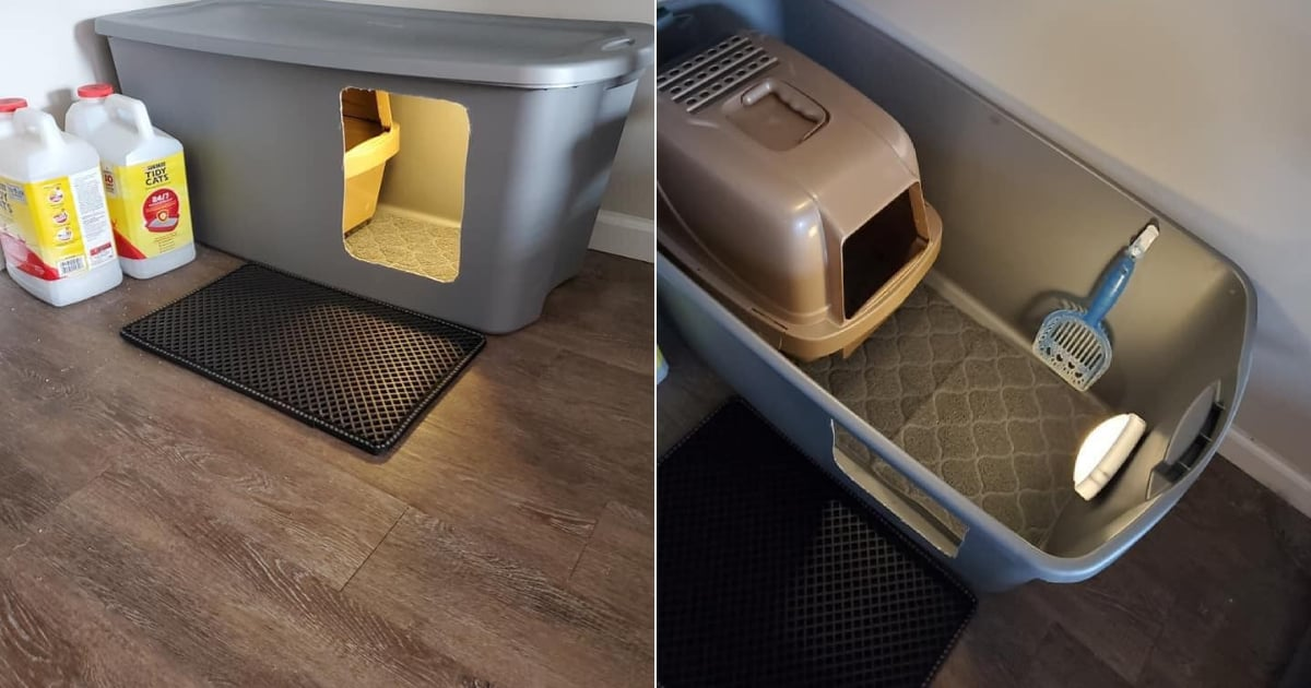 Your Kitties Can Have Their Own Litter-Box Palace Thanks to This Affordable Hack