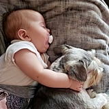 Cute Pictures of Dogs Napping With Kids and Babies