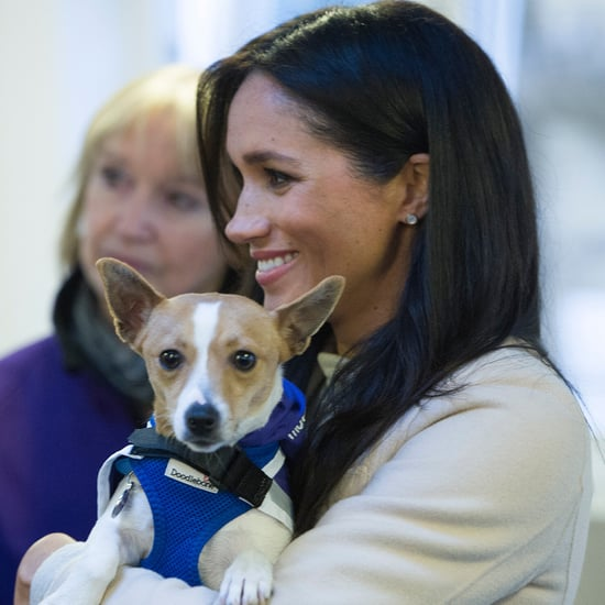 Meghan Markle Visits Mayhew January 2019