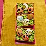 Nature-Inspired Eggs