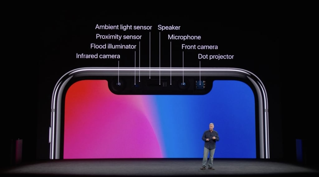 Face ID is made possible by the TrueDepth camera system.