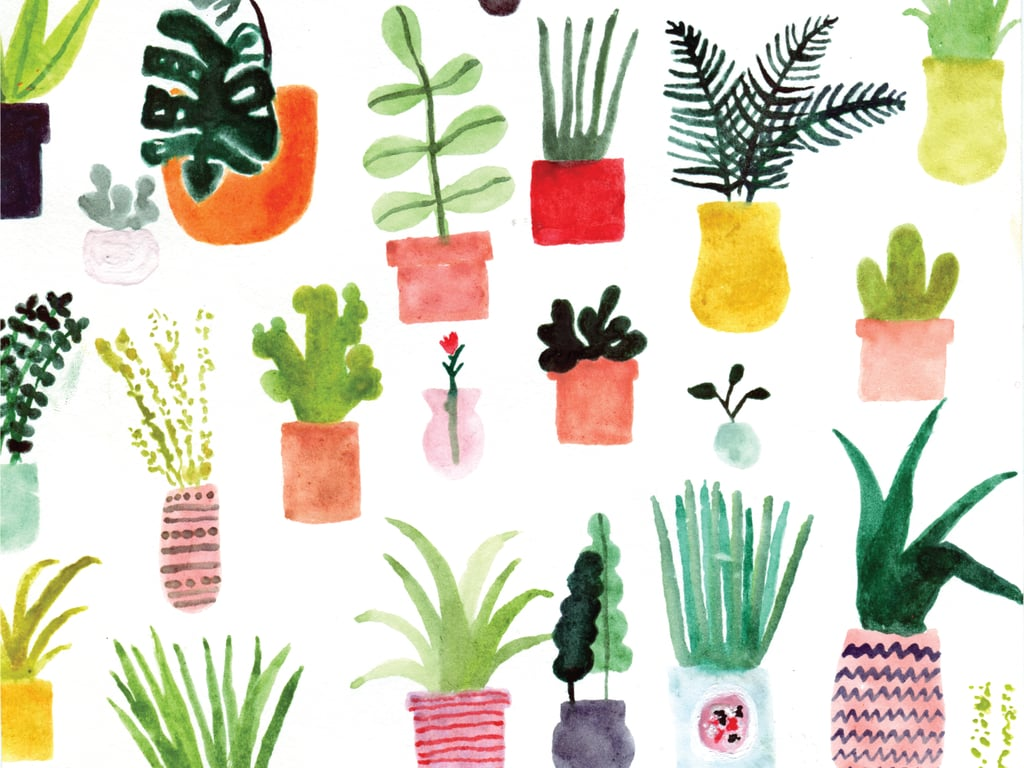 Plants by ban.do