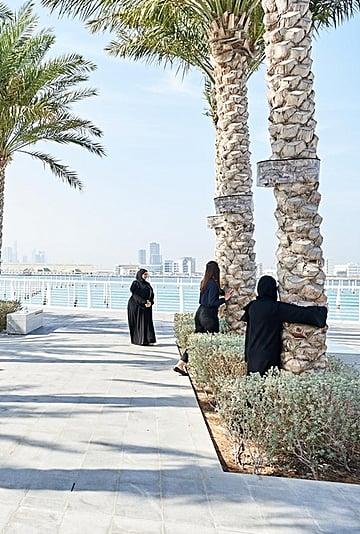 أشجار نخيل تغني في متحف اللوفر أبوظبي 2020