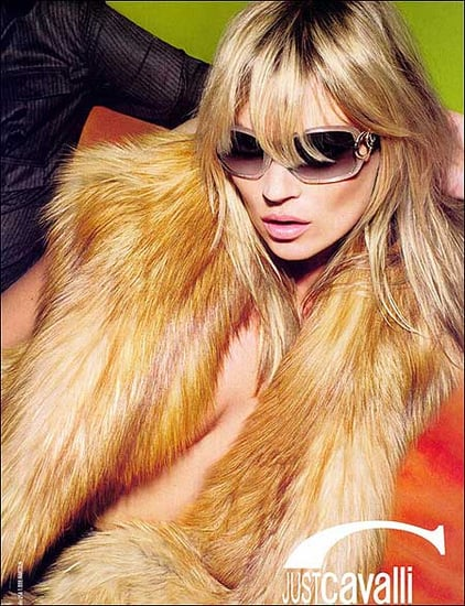 Fab Ad: Kate Moss for Just Cavalli