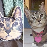 Customized Cat Face Pillows ($30)