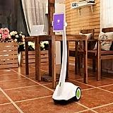 Home and Pet Surveillance Robot