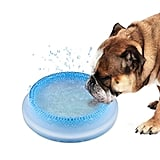 Frosty Bowl Chilled Water Bowl