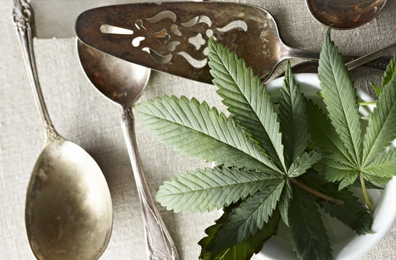 Learn How to Cook With Cannabis