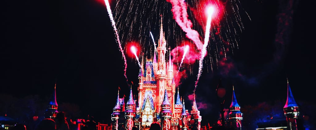 Are Oversize Strollers Banned at Disney Parks?