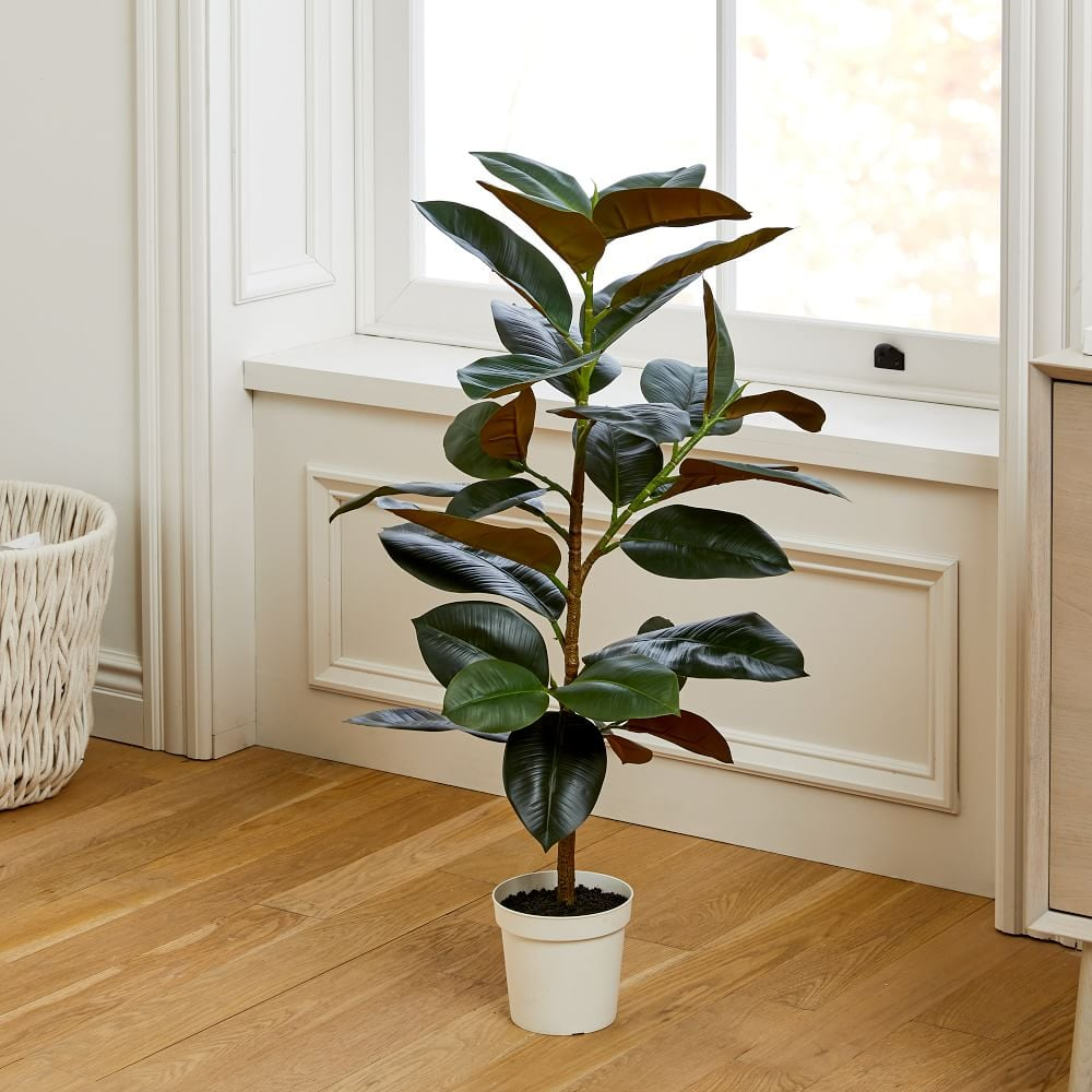 Faux Potted Rubber Tree