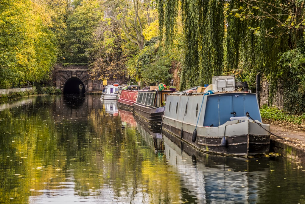 London's Most Stunning Woodland and Nature Walks