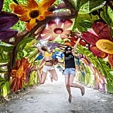 Attend the Sziget Music Festival in Budapest