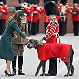 Kate awarded shamrocks to the Irish Guard's Wolfhound on St. Patrick's Day in 2014.