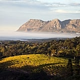 South Africa For Chenin Blanc