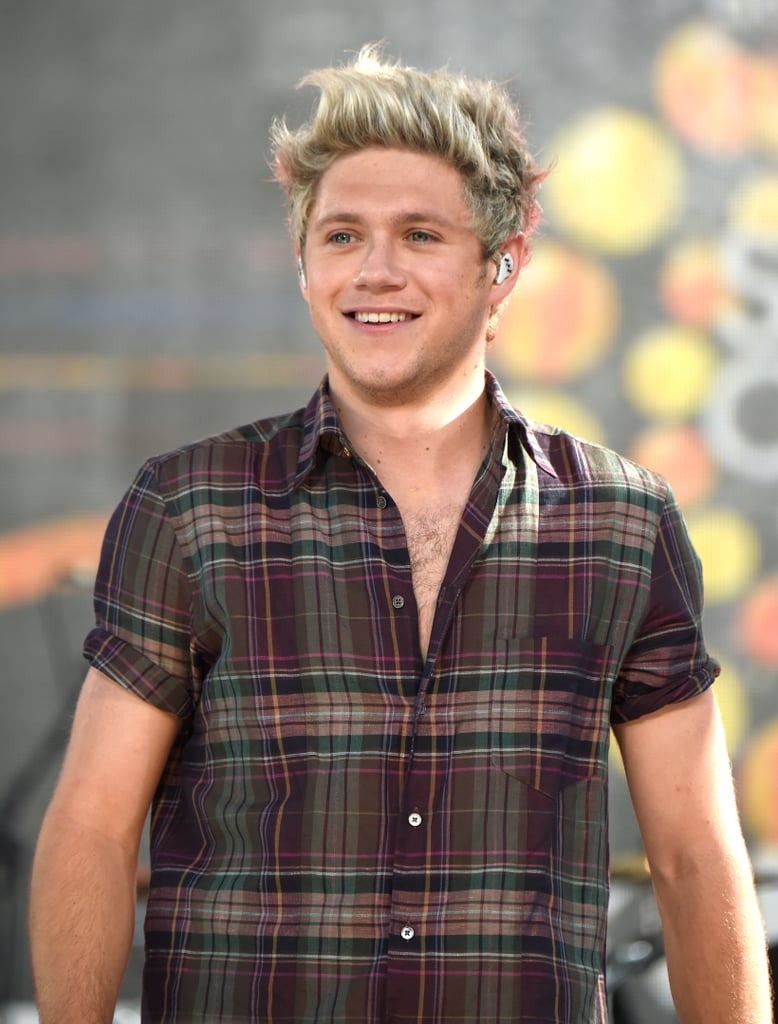 niall horan with brown hair winter 2016 popsugar beauty
