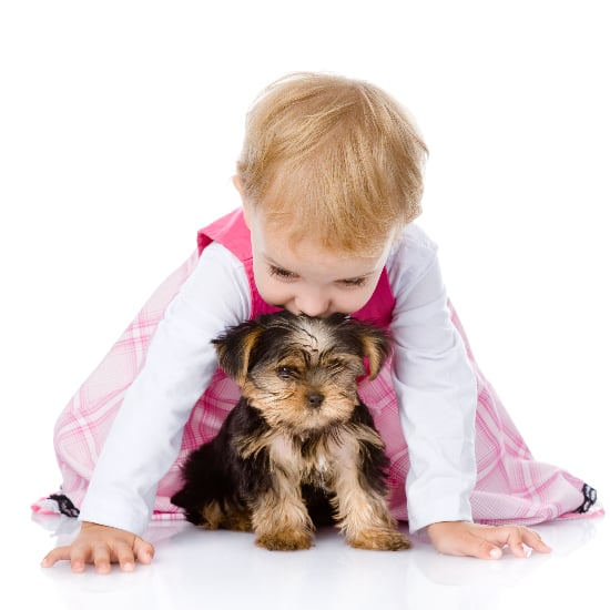 Why Dogs Make the Perfect Babysitters | Video