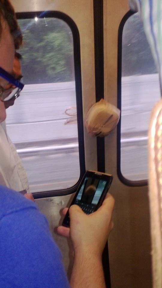 """This guy's lunch made it on the subway without him."" Source: Reddit user GrabsWomensTits_Ass via Imgur"