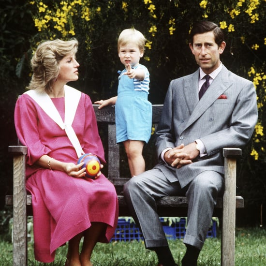 Princess Diana Taking Photos With Her Kids