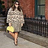 How to Wear Leopard Like a Fashion Girl
