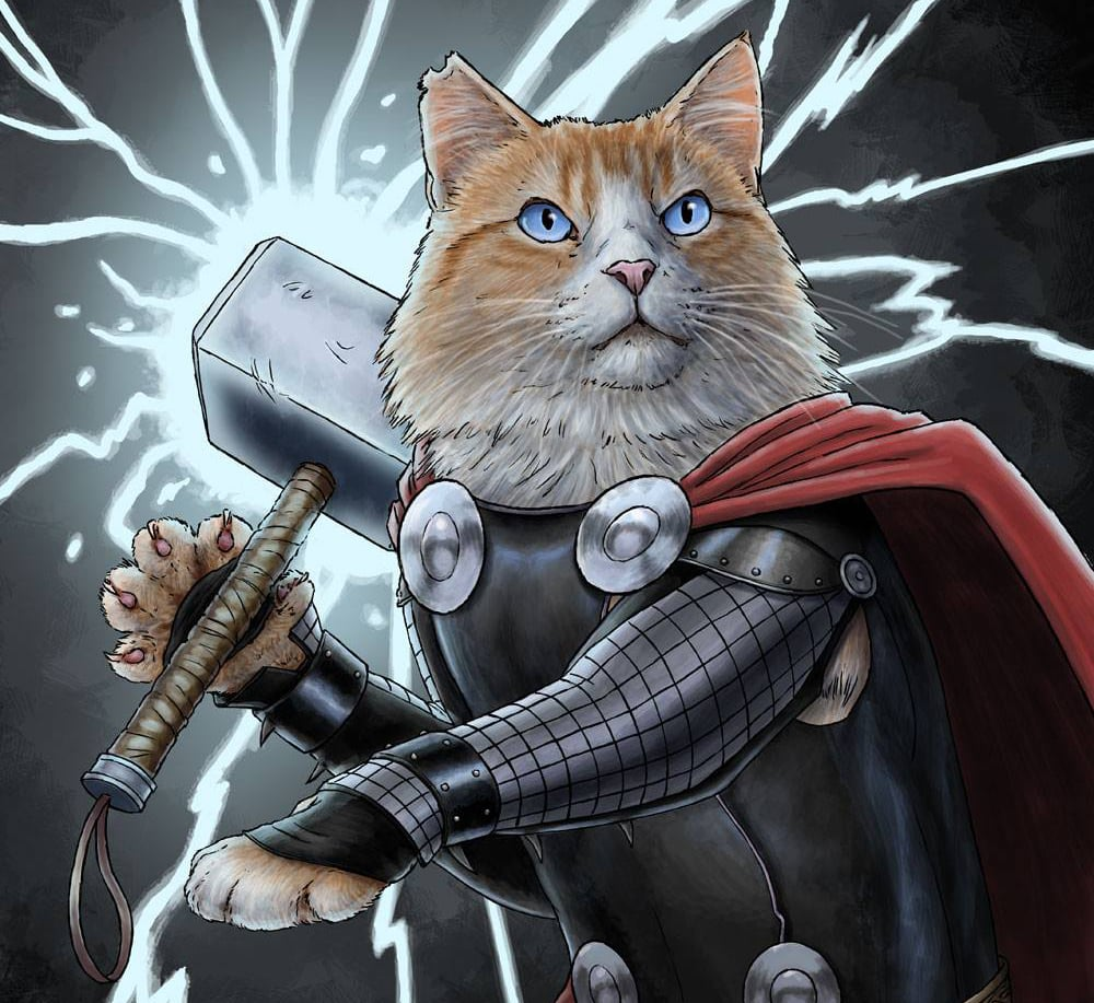 Cats Dressed as Superheroes