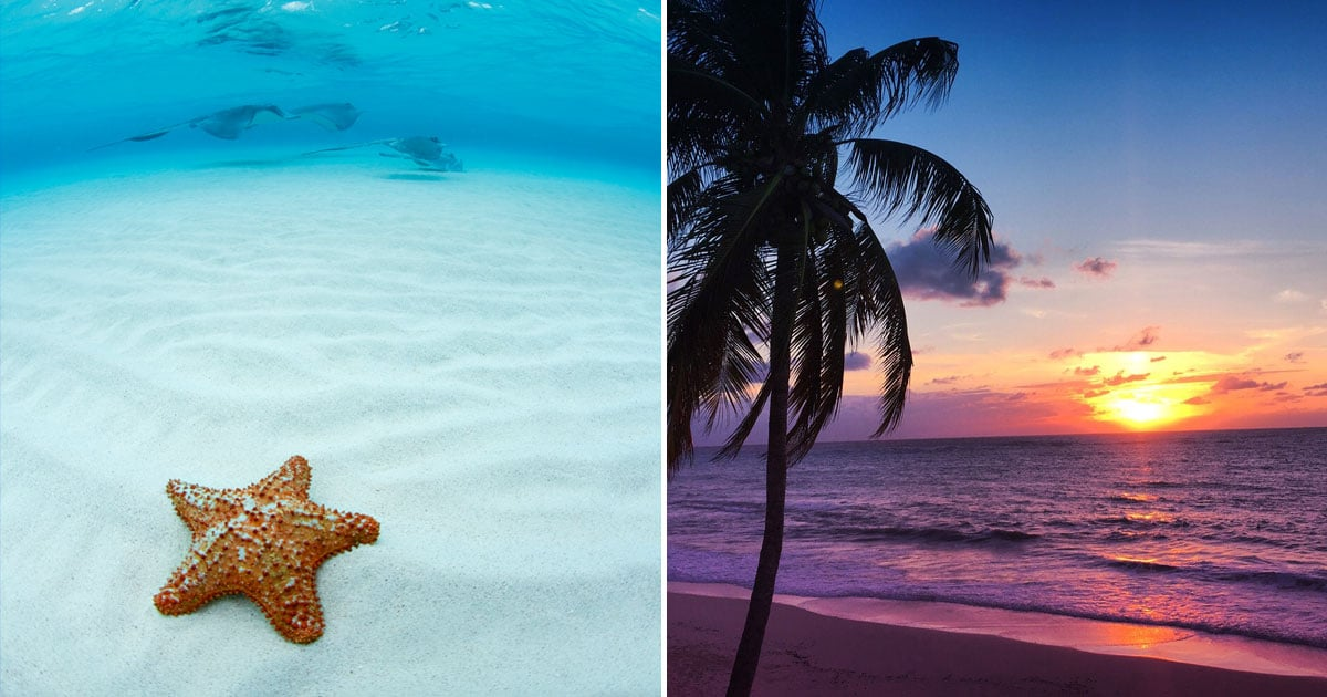 17 Reasons the Cayman Islands Are the Best Place in the Entire Caribbean