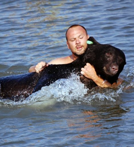 The Scoop: Swimming For Bears