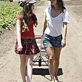 Rachel Bilson chatted with her sister.