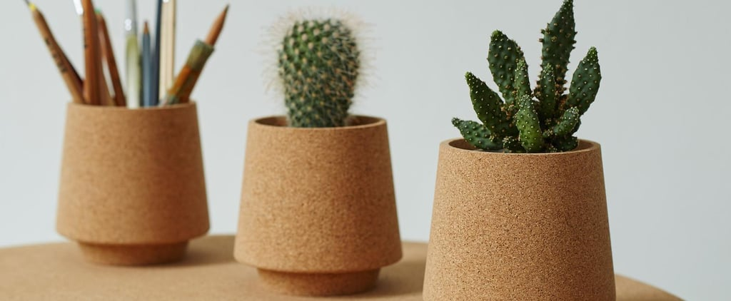 Best Gifts for Conscious Consumers