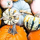 Decorating your home for Fall.