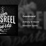 """Grandstand"" by Anthony Mawer"