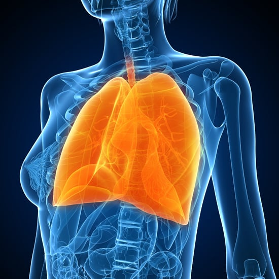 What Do My Lungs Do?
