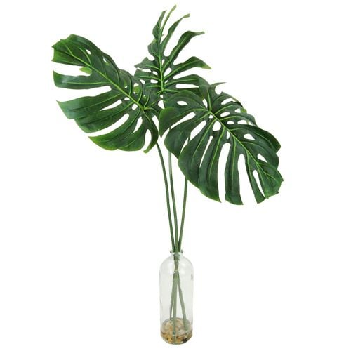 Philodendron Leaves in Glass Bottle