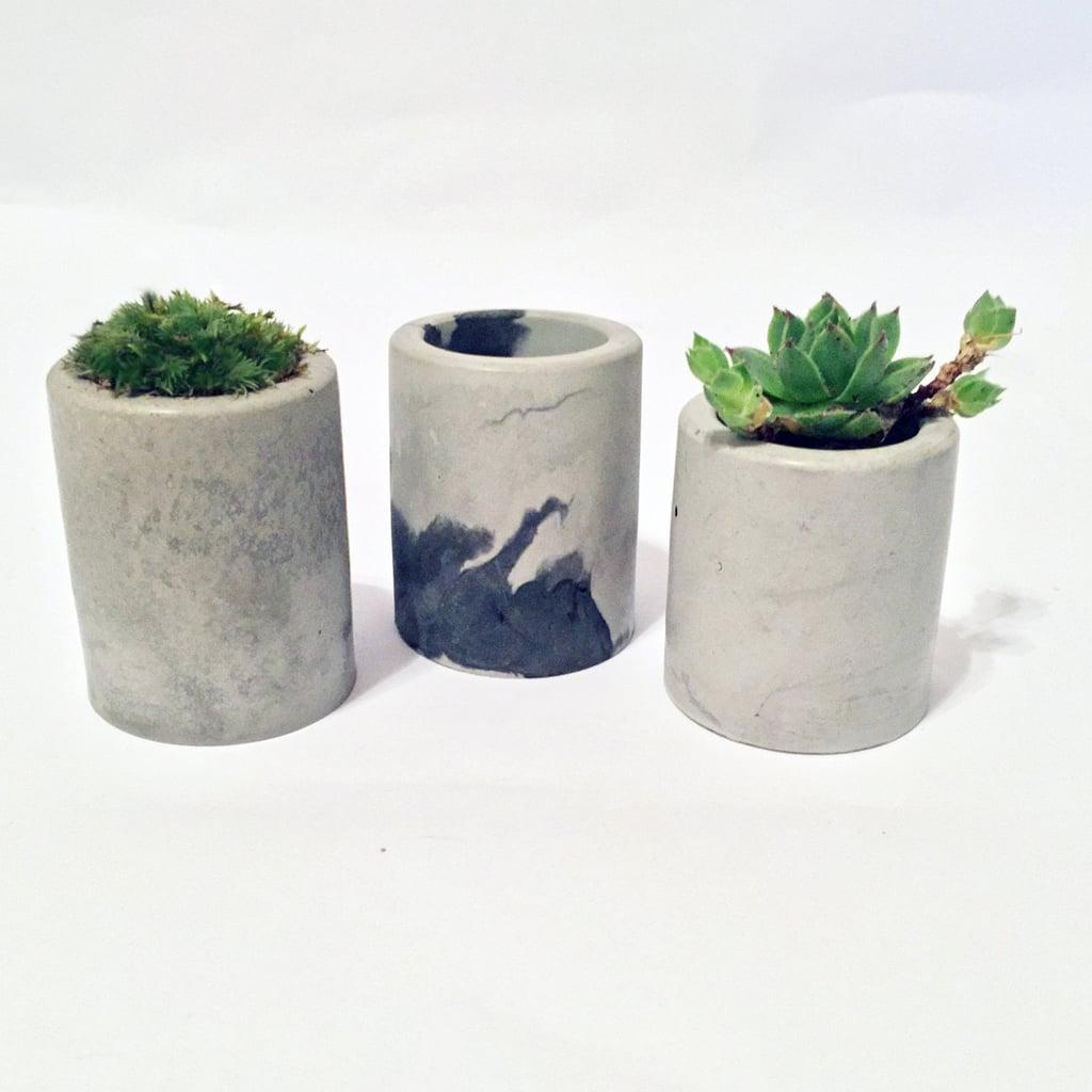 Mini Concrete Planters ($7)
