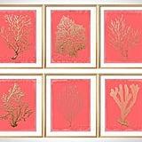 Coral Wall Art