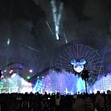 The World of Color — Season of Light nighttime spectacular illuminates Paradise Bay with a Winter fantasy show.