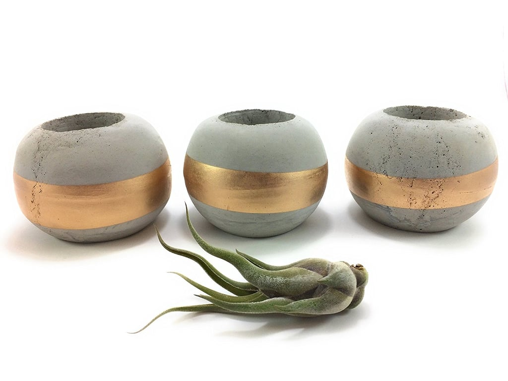 Urban Concrete Design Concrete Succulent Holders