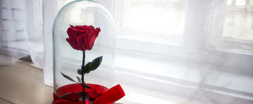 كيف تحافظون على رونق الورود لمدّة أطول؟