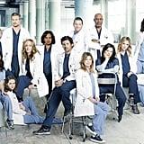 The Doctors in Grey's Anatomy