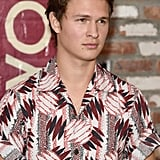 Ansel Elgort as Theodore Decker