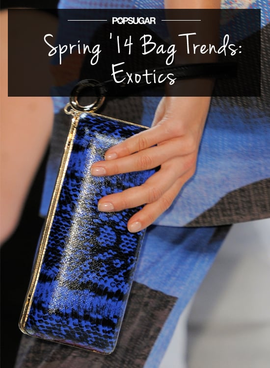 Spring Bag Trend No. 4: Exotics