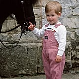 A young Prince Harry posed with with his pony, Smokey, in 1986.