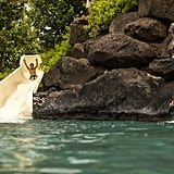 Waikoloa Resort & Spa