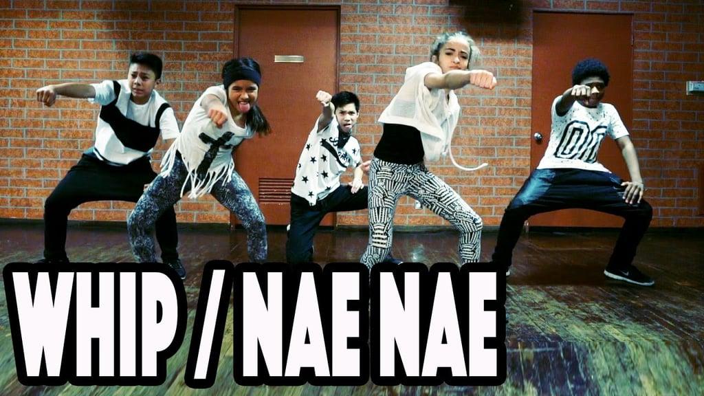 """""""Whip/Nae Nae"""""""