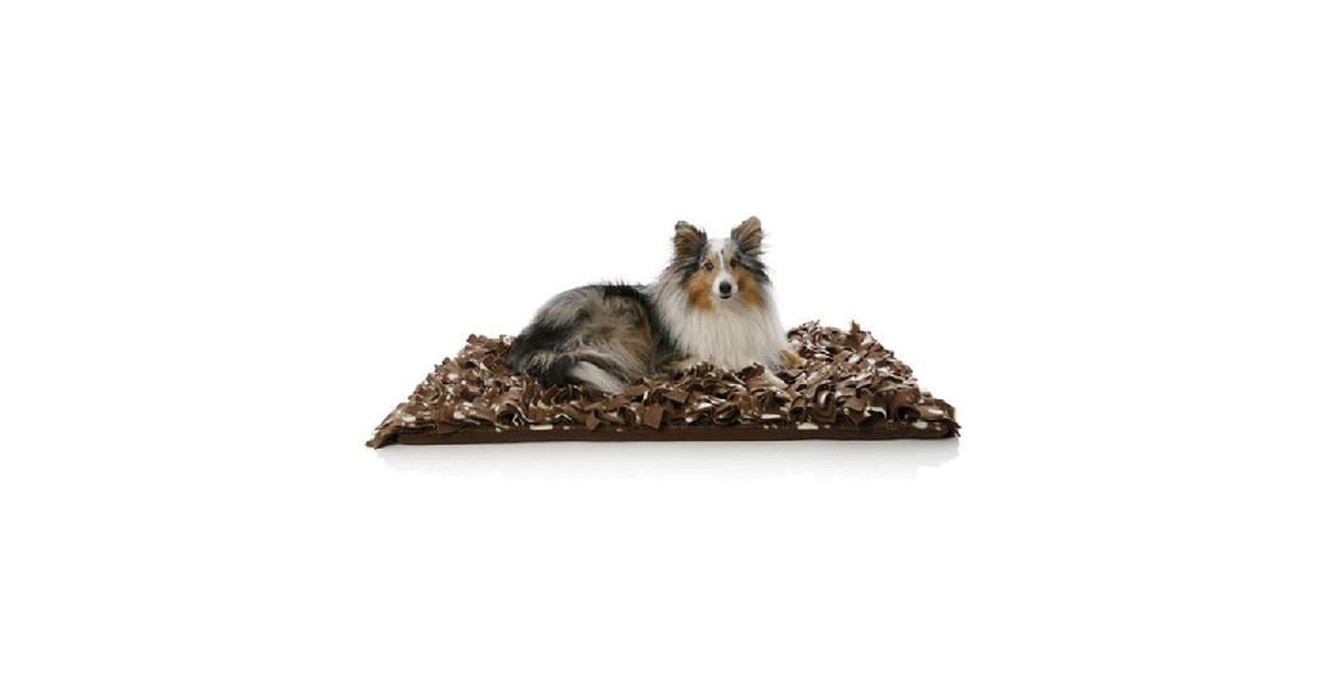 PopsugarLivingBindy BedsNew Product Alert! Bindaboo Bindy BedsMarch 8, 2010 by Pets0 SharesChat with us on Facebook Messenger. Learn what's trending across POPSUGAR.If your pups need the knead-and-pat technique before laying down for some shut-eye, the new Bindy bed by Bindaboo is pawfect for their paws! Looking like a shag carpet sample, the curly soft texture is actually a polyester fleece material that naturally traps heat to regulate pets' body temperature.The fringe is appealing for big-time snuggles, and the two sizes — in chocolate and cream — fit pooches large and small while the price still goes easy on your wallet ($36 to $44). Now, that's what I call a sweet dream. Join the conversationChat with us on Facebook Messenger. Learn what's trending across POPSUGAR.Bindy BedsBindabooPet GearNew Product AlertShoppingWant more?Get Your Daily Life HackSign up for our newsletter.By signing up, I agree to the Terms & to receive emails from POPSUGAR.CustomizeSelect the topics that interest you:LifestyleHeal - 웹