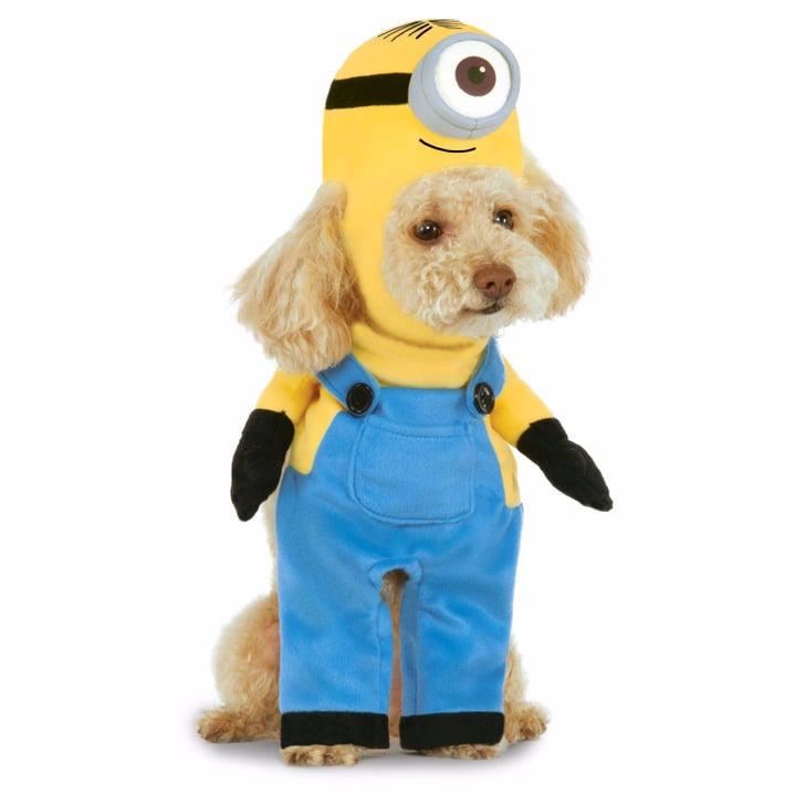 Cheap Pet Costumes Popsugar Smart Living