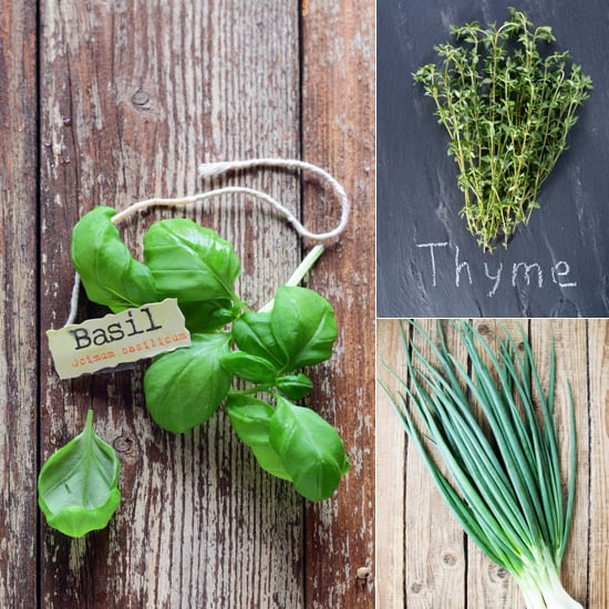 Green Thumb: How to Grow Your Own Culinary Herb Garden