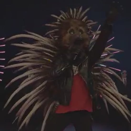 Who is the Echidna on The Masked Singer Australia