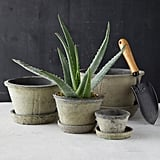 Earth Fired Clay Thin Rim Pot and Saucer
