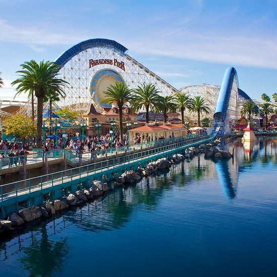 Costco California Adventure Annual Pass