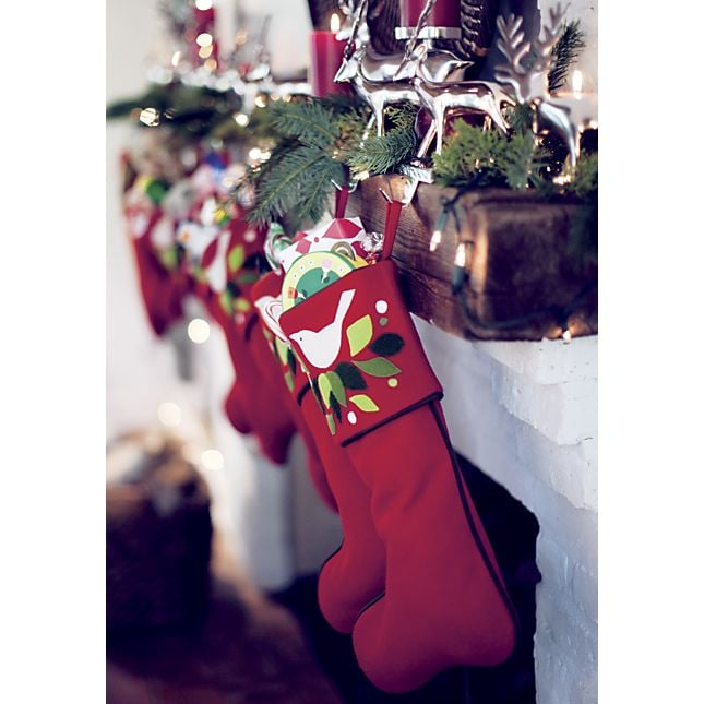 Crate and Barrel Caroline Stocking
